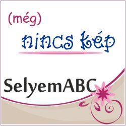 Selyem mandala | 15cm | Pongé  5 | Arty's